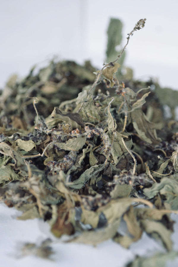 Dried Holy Basil for sale