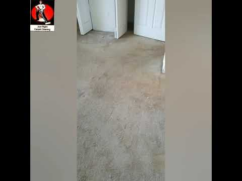 7 Rooms Carpet Cleaning