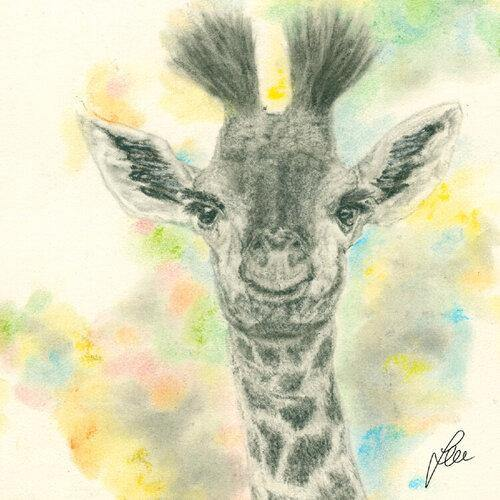 LITTLE GIRAFFE