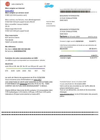 France EDF proof of address utility bill template in word format (customizing from us)