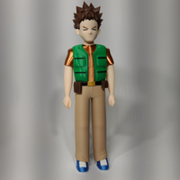 Brock Harrison Pokemon Trainer 3d Printed
