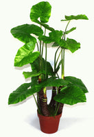 Artificial X-Large 105cm Taro Plant