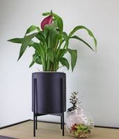 Small Black Ceramic Planter with metal stand