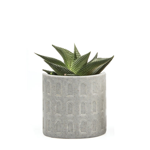 Stagma Planter - Grey Windows