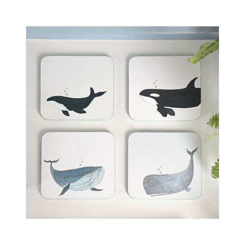 Set of Whale Pattern Coaster with Blue Text 4 with Holder