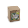 Intensely Fragrant Soy Candle - Walk in the Woods in box