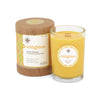 Seeking Balance 6.5 oz  Spa Candle- Enlighten
