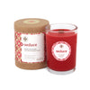 Seeking Balance 6.5 oz  Spa Candle - Seduce