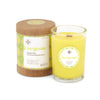 Seeking Balance 6.5 oz  Spa Candle - Invigorate