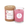 Seeking Balance 6.5 oz  Spa Candle - Purify