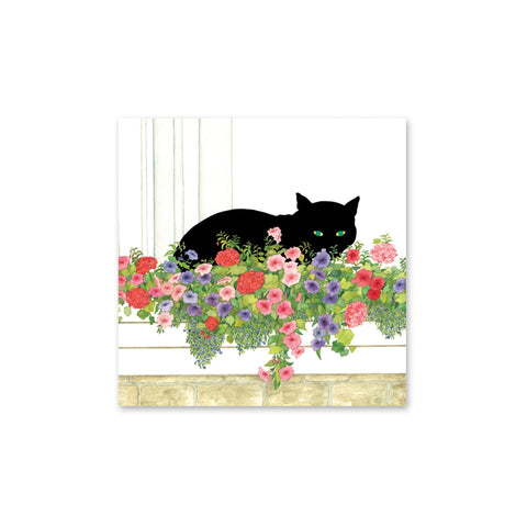 Black Cat Flower Box Beverage Napkins