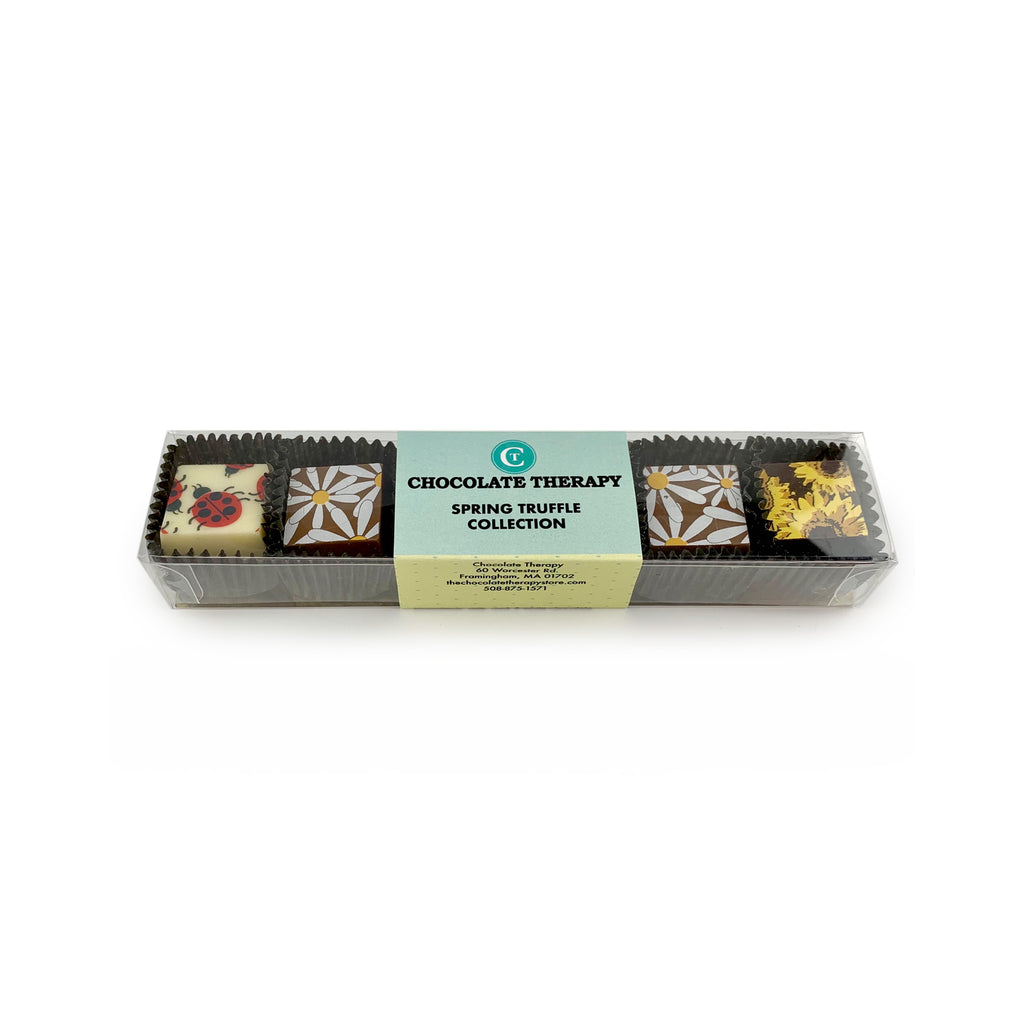 Chocolate Therapy 6PC Truffle Assortment - Spring Collection