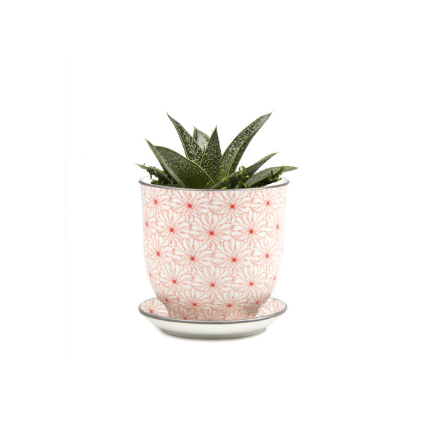 Liberte Plant Pot with Saucer - Red Flowers