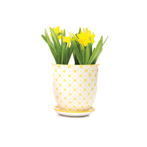 Big Liberte Plant Pot with Saucer - Yellow Stars