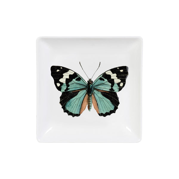 Butterfly Curios Trinket Tray