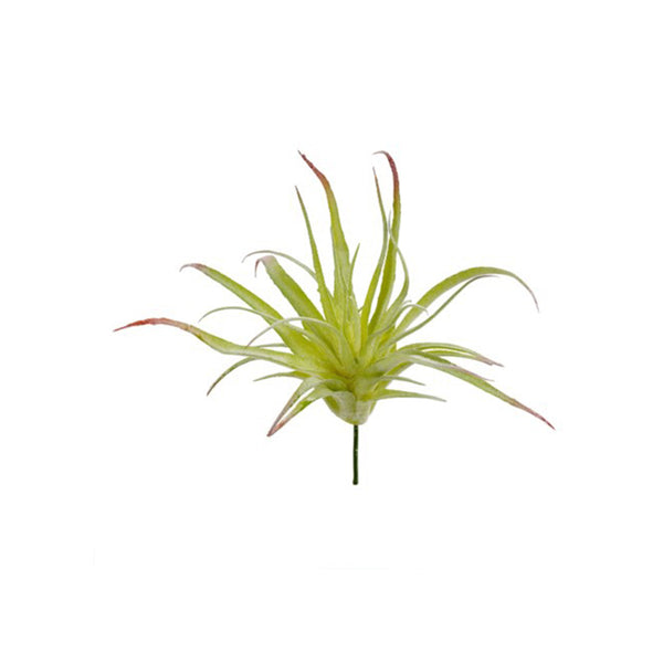 Faux Air Plant  - Large