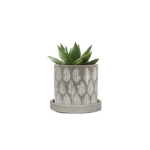Balter Planter - Grey Leaves