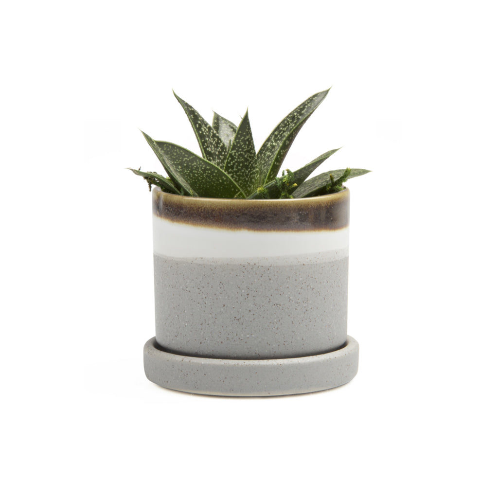 Small Minute Plant Pot with Saucer - Mocha Cement
