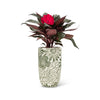 Textured Floral Cement Vase - Small - in use
