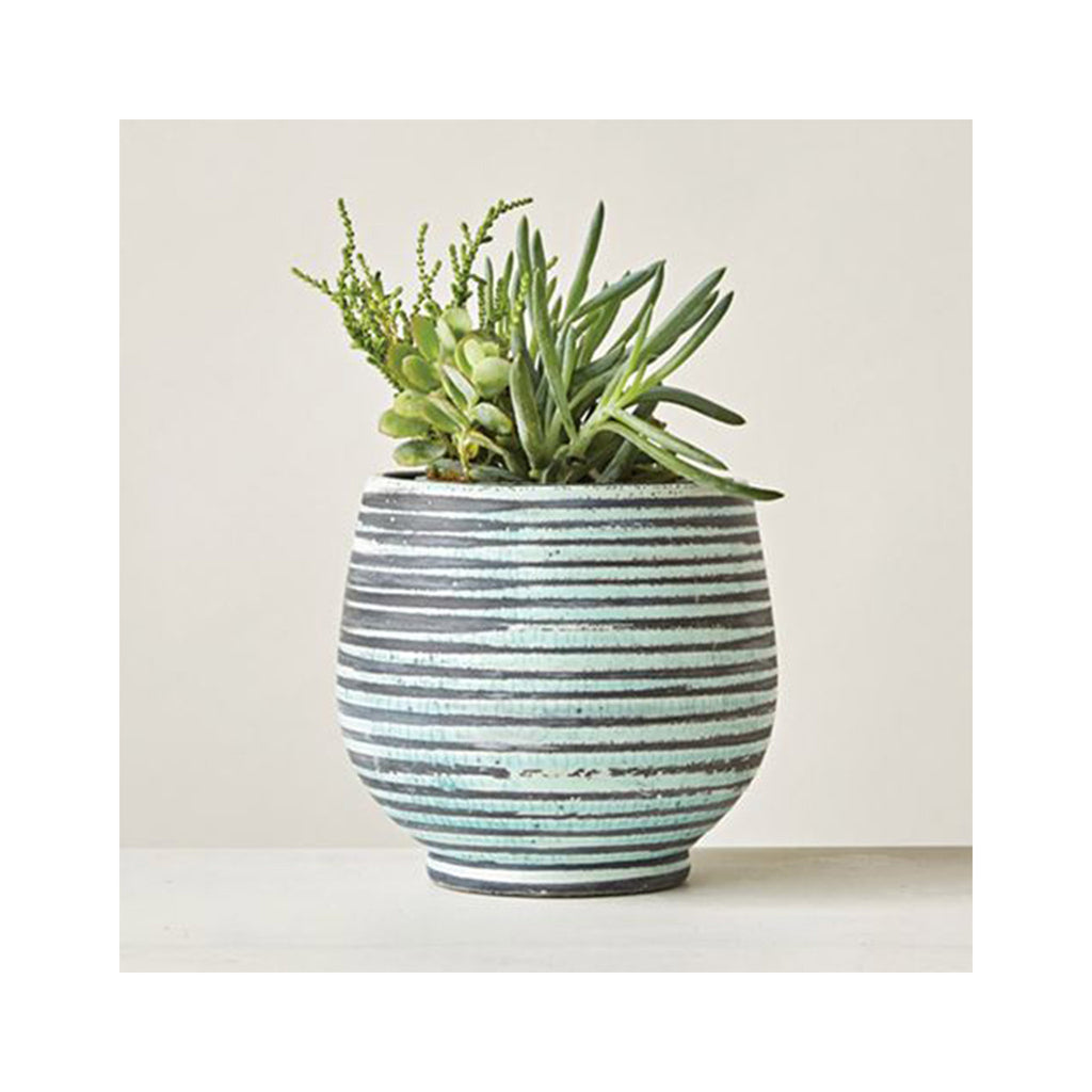 Terrcotta Striped Planter with plant