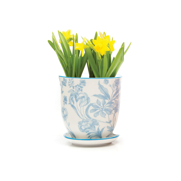 Big Liberte Plant Pot with Saucer - Blue Garden