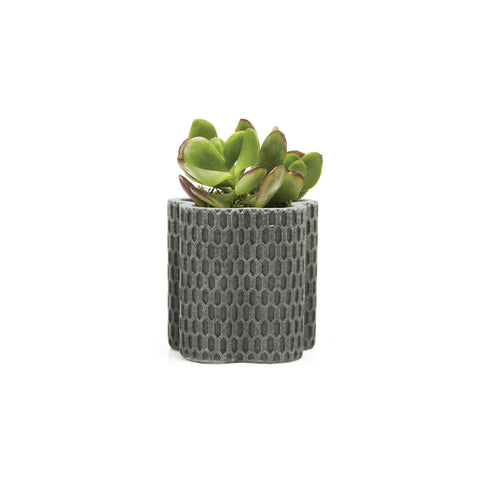 Stagma Planter - Charcoal Waves