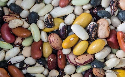 Beans Top 10 Food Reduce Inflammation