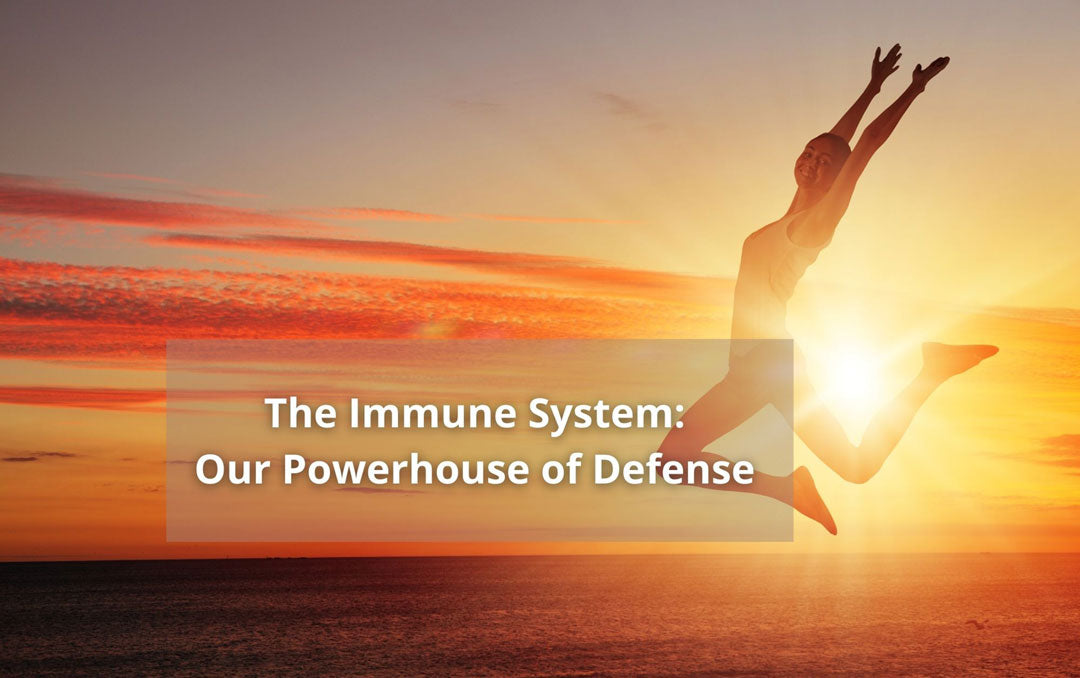Immune System Defense