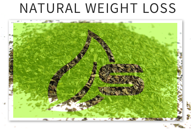 Natural weight loss green tea to shed pounds