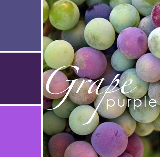 grape purple