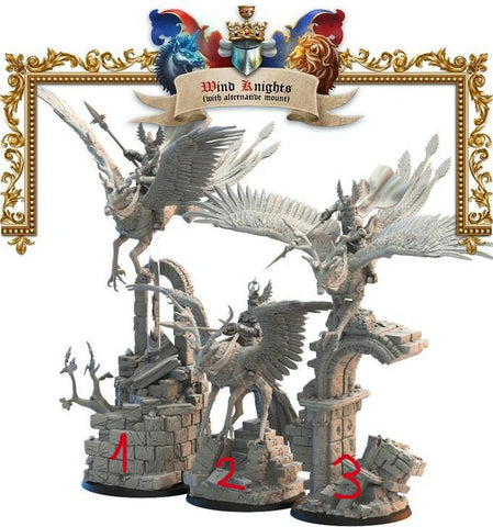 3 Wind Knights Lost Kingdom Reino de Mercia  (the 9th age, AOS, warhammer, Bretonia, King of War) - TODO ROL SPAIN