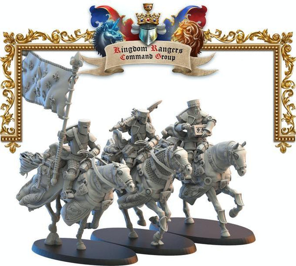 Comandantes Rangers Knights Lost Kingdom Reino de Mercia  (the 9th age, AOS, warhammer, Bretonia, King of War) - TODO ROL SPAIN