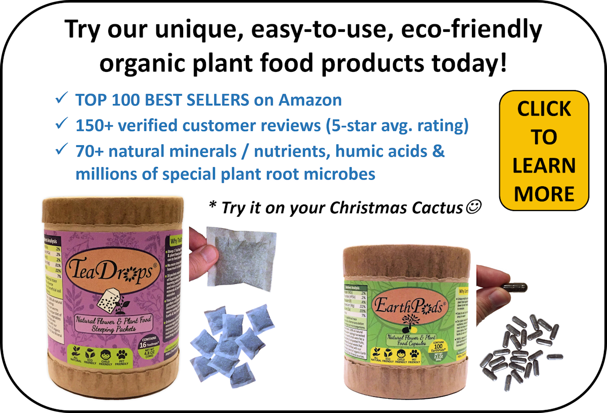 Feed Your Orchids With Our TeaDrops 100% All Natural Organic Plant Food Steeping Packets