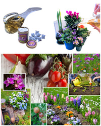 TeaDrops® Organic Flower Fertilizer & Natural Plant Food Products to Grow Herbs Flowers Vegetables