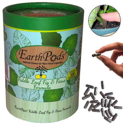 Open container of EarthPods® FIDDLE LEAF FIG & FICUS Organic Plant Food Spikes (100 Fertilizer Capsules)