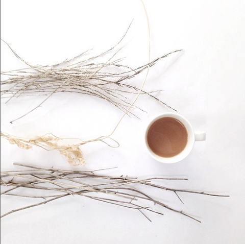 coffee and natural twigs images by mary jo hoffman still blog