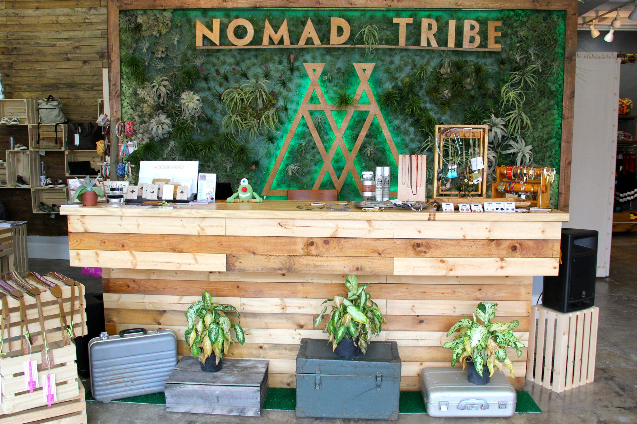 Tv Head Co. x Nomad Tribe