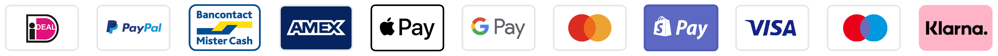 Payment icons Rino&Pelle