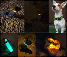 Load image into Gallery viewer, Pet LED Collar