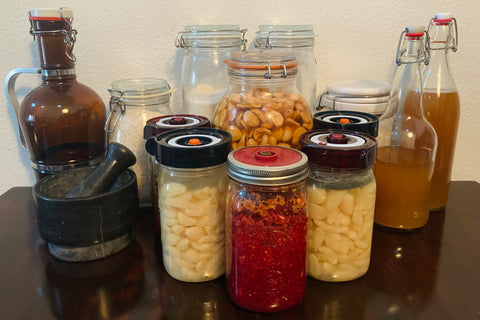 my ferments: get started in fermentation