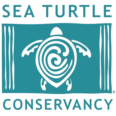 Beach Shack Sauces Partners With The Sea Turtle Conservancy