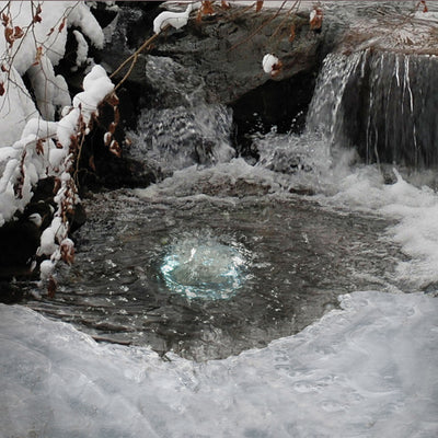 What to do in a Pond Freeze