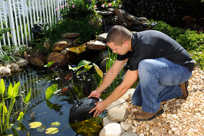 Filtration Systems and Products for Ponds with Fish