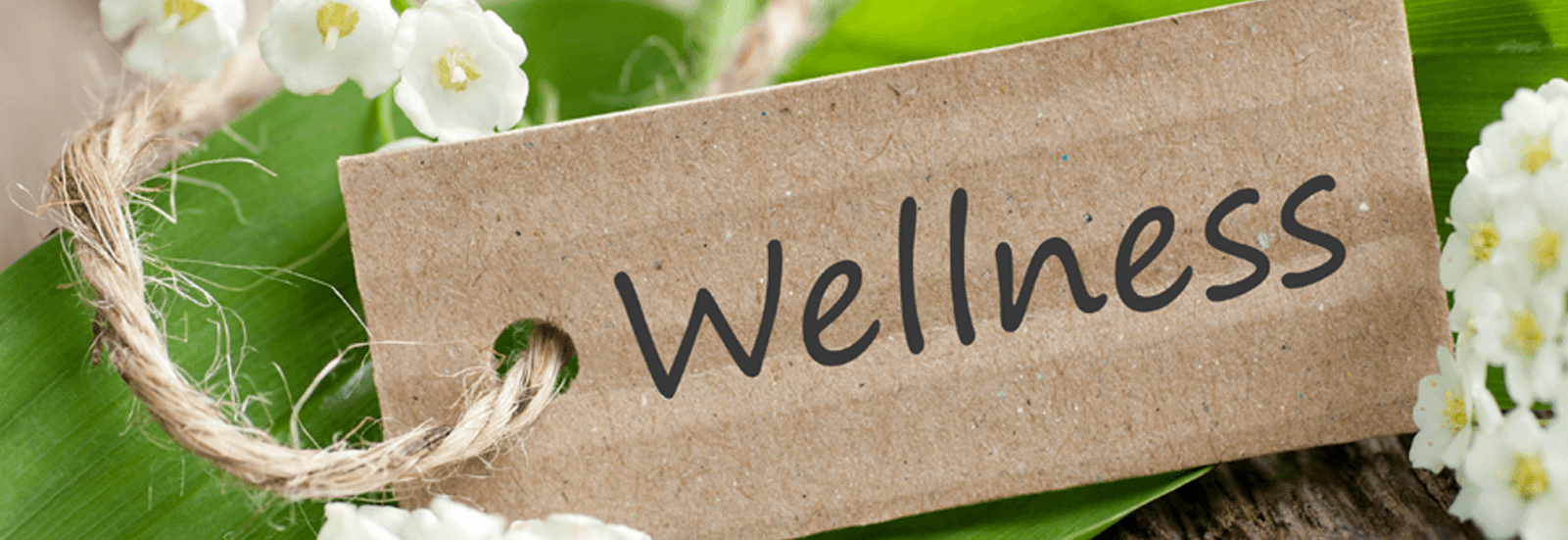 Wellness - Ayurveda/The Science of Life - The Himalaya Drug Company