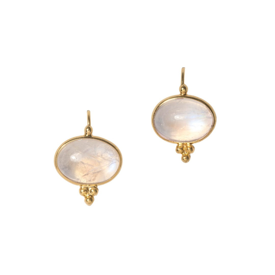 Mazza Capri Moonstone 14K Yellow Gold Earrings