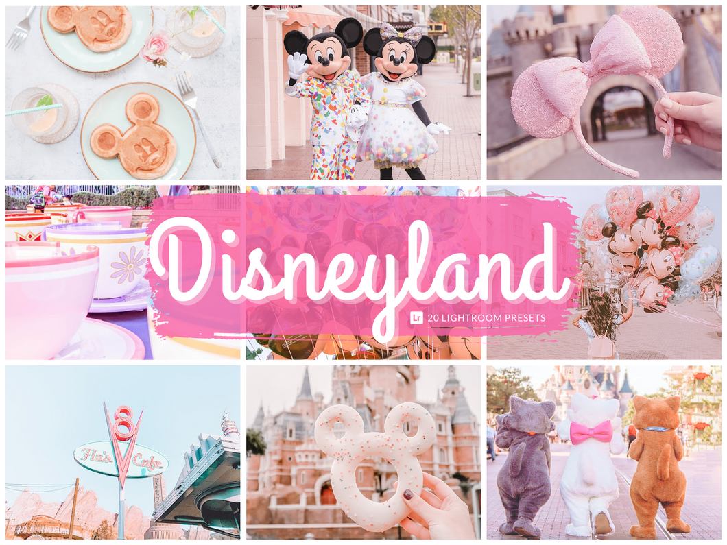Disneyland Lightroom Presets