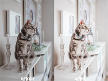 Load image into Gallery viewer, Clean Spaces Lightroom Presets