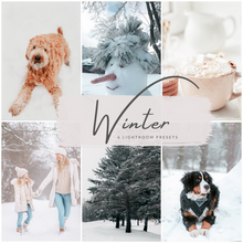 Load image into Gallery viewer, Winter Lightroom Presets