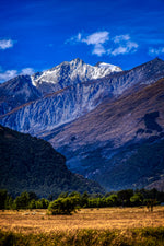 Glenorchy 'Blue'