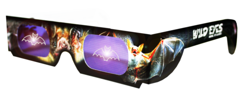 Bat Wild Eyes Glasses